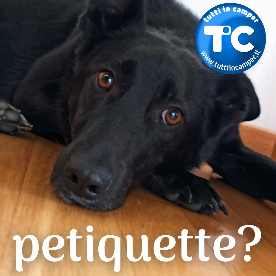 tic-petiquette
